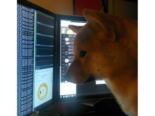Earn 10000+ DogeCoin Daily