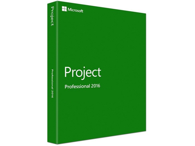 Microsoft Project Professional any version 2010/2013 or 2016 version