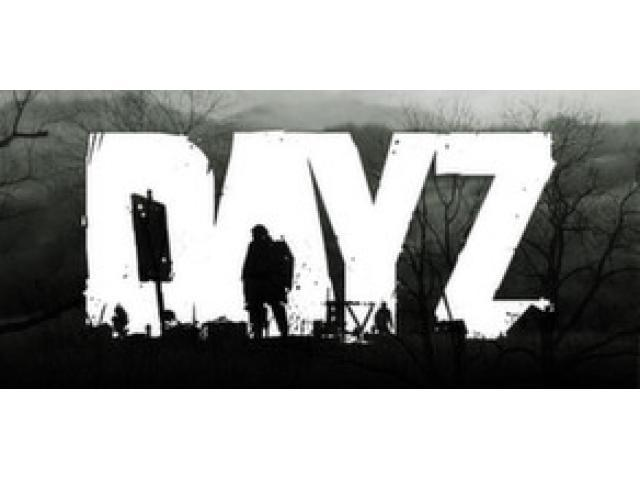 DayZ Steam Key